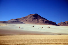 Lonley rocks on Altiplano Royalty Free Stock Photo