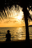 Lonly girl. Girl under coconut tree on sunset beach Royalty Free Stock Photos