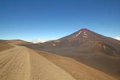 Lonquimay en tolhuacavulkaan, Chili Royalty-vrije Stock Fotografie