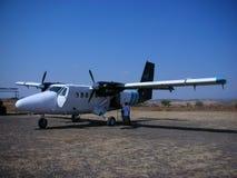 Lontra gêmea dos aviões. Fotos de Stock Royalty Free