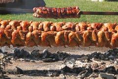 Lonza arrostita di maiale e del pollo su uno sputo Fotografie Stock Libere da Diritti