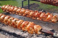 Lonza arrostita di maiale e del pollo su uno sputo Fotografia Stock