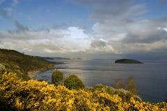 Looeeiland ( Van Cornwall: Enys lann-Managh, die eiland van monk&#x27 betekenen; s enclosure) Royalty-vrije Stock Foto