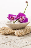 Loofah glove with orchid flowers for spa treatment. Spa and wellbeing concept - stone cup of water with pink orchid flowers with natural loofah glove for symbol Royalty Free Stock Photo
