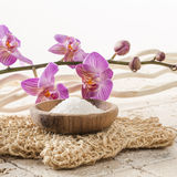 Loofah glove with orchid flowers for spa treatment. Spa and wellbeing concept - stone cup of water with pink orchid flowers with natural loofah glove for symbol Stock Photography