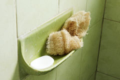 Loofah and soap Stock Photography