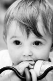 The look. Cute baby Stock Images