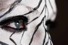 The look. Closeup of the eye - girl with the zebra makeup Stock Photography