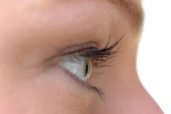 The look. Young ladys eye close-up royalty free stock photo