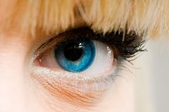 Look. Beautiful woman with blue contact lenses Stock Photography