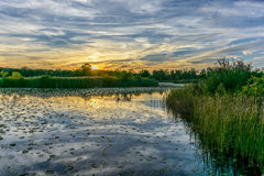 A look across the marsh royalty free stock images