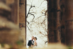A look from afar on a stunning wedding couple standing between o Stock Image