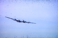 Look at airplanes through the glass Royalty Free Stock Images