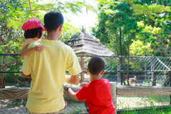 Look animal at zoo. Back of asian father and two kids  who look the animals in cage at zoo Royalty Free Stock Photo