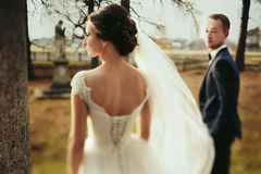 A look from behind on the delicate bride`s back while she looks. At the sun royalty free stock photography