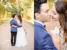 Look from behind at gorgeous wedding couple kissing Royalty Free Stock Image