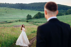 Look from behind the groom at radiant bride Royalty Free Stock Photography