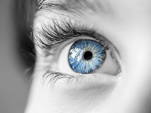 Look blue eyes boy Stock Images