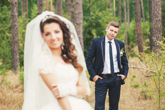 Look at the bride groom Royalty Free Stock Photography