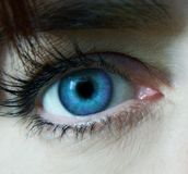 Look Close. Macro of woman's blue eye stock photo
