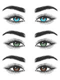 Look of colorful female eyes Royalty Free Stock Images