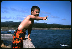Look dad!. Son pointing towards the beach to show that he spoted a sea lion. Shot with Kodachrome 64 slide film, and scaned from negative Stock Images