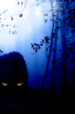 Look from darkness. Dark series - a look from darkness. Yellow monster eyes in the dark foggy forest Stock Photo
