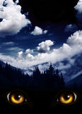 Look from darkness. Dark series - a look from darkness. Yellow monster eyes and mysterious landscape of foggy mountain and night sky Stock Image