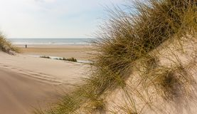 Look from dunes to the beach at the north sea in the netherlands stock image