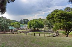 Look of field with cattle-pen in zoo Royalty Free Stock Photo