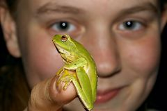 Look at this girl with frog Royalty Free Stock Image