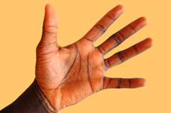 Look at Me#2. This is an image of a black hand waving against an amber background to get attention. Cream/brown background. Warmth Royalty Free Stock Image