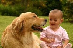 Look at me. Children looking at the dog Royalty Free Stock Images
