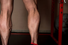 Look At  My Calves Stock Photos