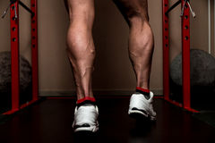 Look At  My Calves. Muscular Bodybuilder's Legs Shot In A Gym After workout Stock Image