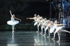 Look at one's image in the mirror and pity oneself-The Swan Lakeside-ballet Swan Lake Stock Image
