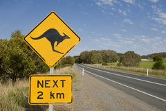 Look out for kangaroos Royalty Free Stock Photography