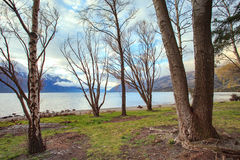 Look out scenery of lake wakatipu queentown south island new zea Stock Photo