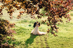 Look through red leaves at groom bending bride over Stock Images