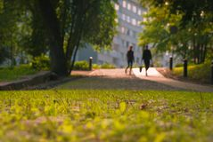 A look at silhouettes down a grassy path. A very low shot with depth of field along the grassy path walkway in Turku Finland Royalty Free Stock Photo