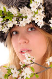 Look through spring flowers Royalty Free Stock Image