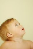 Look up. Little baby boy looking up Stock Images