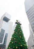Look up Christmas tree IN CBD Stock Photo