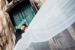 Look through the veil at groom bending his bride over Royalty Free Stock Images