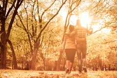 Look at what we`ve accomplished. African American couple in hug walking trough forest. From back royalty free stock images