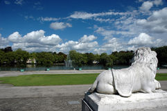 Lookin for this summer. Marble lion in the park Stock Image