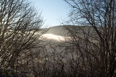 Looking through autumnal, bare branches with some dead, dried leaves, on atmospheric view of mist, fog and cloud. With sunlight on a mountain top an early stock images