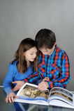 Looking a book. Siblings looking together at a book Stock Photography