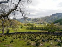 Looking into Borrowdale valley across fields Royalty Free Stock Photography