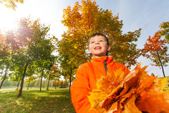Looking boy with bunch of bright orange leaves Stock Photo